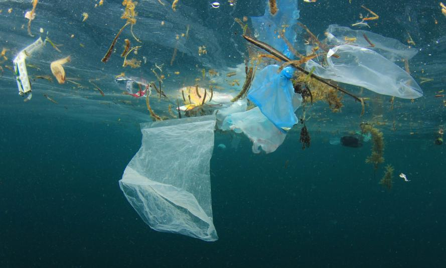 a view from underwater shows plastic bags and other debris floating in the sea