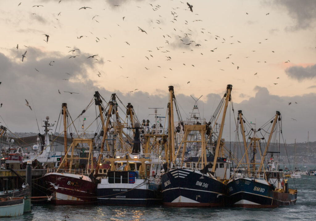 Fishing boats moored in Brixham harbour in Devon, England